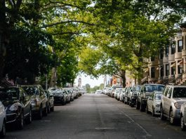 Preserving Mature Trees in Smart Cities