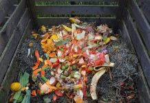 Why Reducing The Food Waste Should Be A Prime Concern?