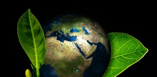 Which Are The Top Eco Friendly Cities In The World?