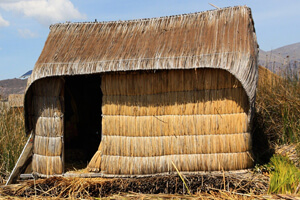 Reed - A Sustainable Low-cost Solution For Constructing Houses